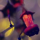 I Dream of Electric Flowers by duncandragon