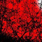 Black Limbs in the Red of Night by MrJakk