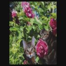 Kittens in The Roses by MaeBelle