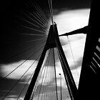 Silhouette on Anzac by David Haworth