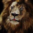 King by Jamie Lee
