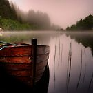 Just add birdsong... Loch Ard , Trossachs by David Mould
