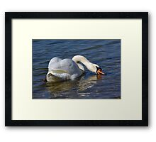 Back Drink Framed Print