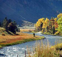 Chrystal River by Vendla