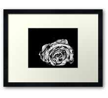 Dream Rose in B&W Framed Print