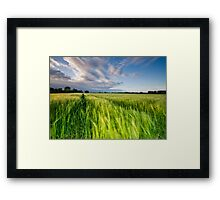 The Wind That Shakes the Barley Framed Print