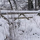 Wintery Gate by Puddlejumper9
