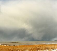 Saltaire & Antelope Island - Spring Snow Storm by Ryan Houston
