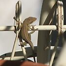 Baby Lizards Climbing The Munkey Bars-2 by JeffeeArt4u