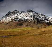 The Langdale Pikes by Brian Kerr