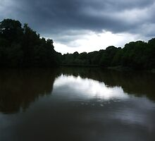 Cannop Ponds turn moody by Puddlejumper9