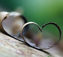 love is everywhere by Cheryl Ribeiro
