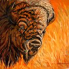 Where The Buffalo Roam by Susan Bergstrom