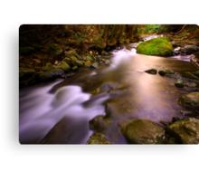"""Liffey River"" Canvas Print"