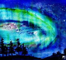 Northern Lights, Churchill, Manitoba, Canada by Blended