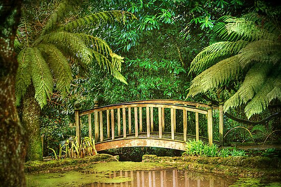 The Bridge . by Irene  Burdell