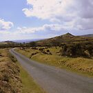 Dartmoor: The Road at Ollsbrim by Rob Parsons