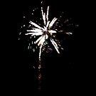 Fireworks 3. by Hannah Edwards