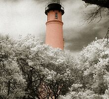 Ponce Inlet Lighthouse by Barbara Simmons