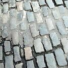Cobblestone path by heartyart