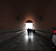 Beijing Forbidden City 2 by DDIsland