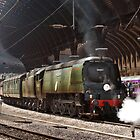 Tangmere at York by Tom  Holland