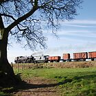 Freight train on the East Lancs Railway, by Tom  Holland