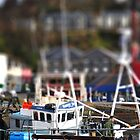 Oban Harbour by swhite99