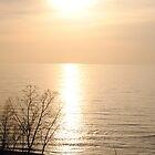 Lake Erie Sunset by Sensitvesoul
