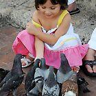 PIGEONS by mc27