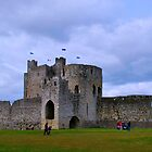 Curtain Wall - Trim Castle by Ferdinand Lucino