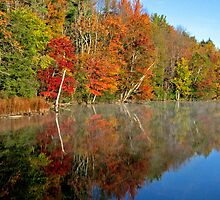 Fall Foliage Berkshires by Randy Mendelsohn