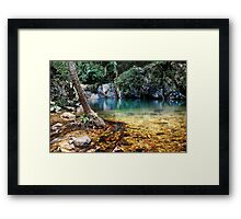 LIVING RAINFOREST Framed Print