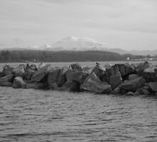 Mt. Baker and the Pacific Ocean by Jessica Friesen