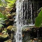 Tropical Waterfall by Rosalie Scanlon