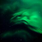 Night Creature of the North by peaceofthenorth
