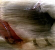 Bullfighting−22、SPAIN by yoshiaki nagashima
