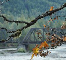 Yonder Bridge by Jeff Cook