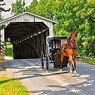 Eshelman's Mill Covered Bridge by Monte Morton