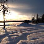 Winter in Alaska by Peg Robb