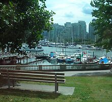 Stanley Park Bench by Jessica Friesen