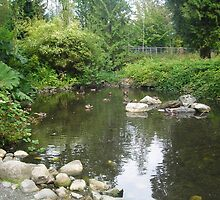 Stanley Park Hidden Pond by Jessica Friesen