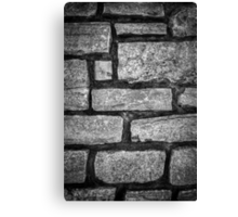 Oh These Barriers We Build Canvas Print