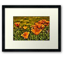 Antelope Valley Framed Print
