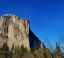El Capitan-Yosemite National Park, Ca by Alan Brazzel