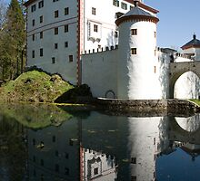 sneznik castle, Slovenia by Ian Middleton