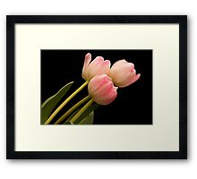 Tickled Pink Framed Print