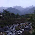 Norlingam, Dharmsala, India by Ravs