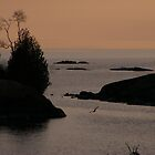 Sweegrass Cove Sunset by Dave Lechko