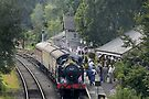 Cranmore station, Somerset, England, UK, by buttonpresser